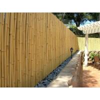 Hochwertiger Garten Zaun Sichtschutz Bambus ATY NATURE von DE-COmmerce® I Garten, Terrasse, Balkon Sichtschutz Bambus mit geschlossenen Rohren I Windschutz Bambus (HxB) 180 cm x 180 cm